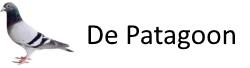 Logo-de--patagoon