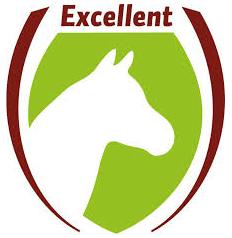 Logo-excellent